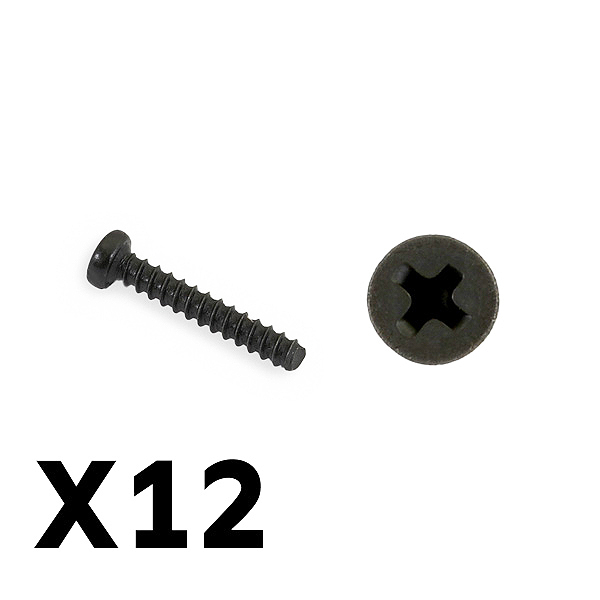 FTX TRACER PAN HEAD SELF TAPPING SCREWS PBHO2*12MM