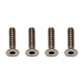 ASSOCIATED TI SCREWS 3 X 12MM FHCS (4) TITANIUM