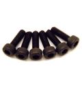 Fastrax M3 X 25 Socket Cap Head Screws (6)
