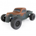TEAM ASSOCIATED TROPHY RAT BRUSHLESS RTR TRUCK