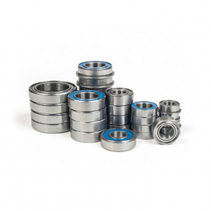 SCHELLE TLR 8IGHT 4.0 BEARING SET